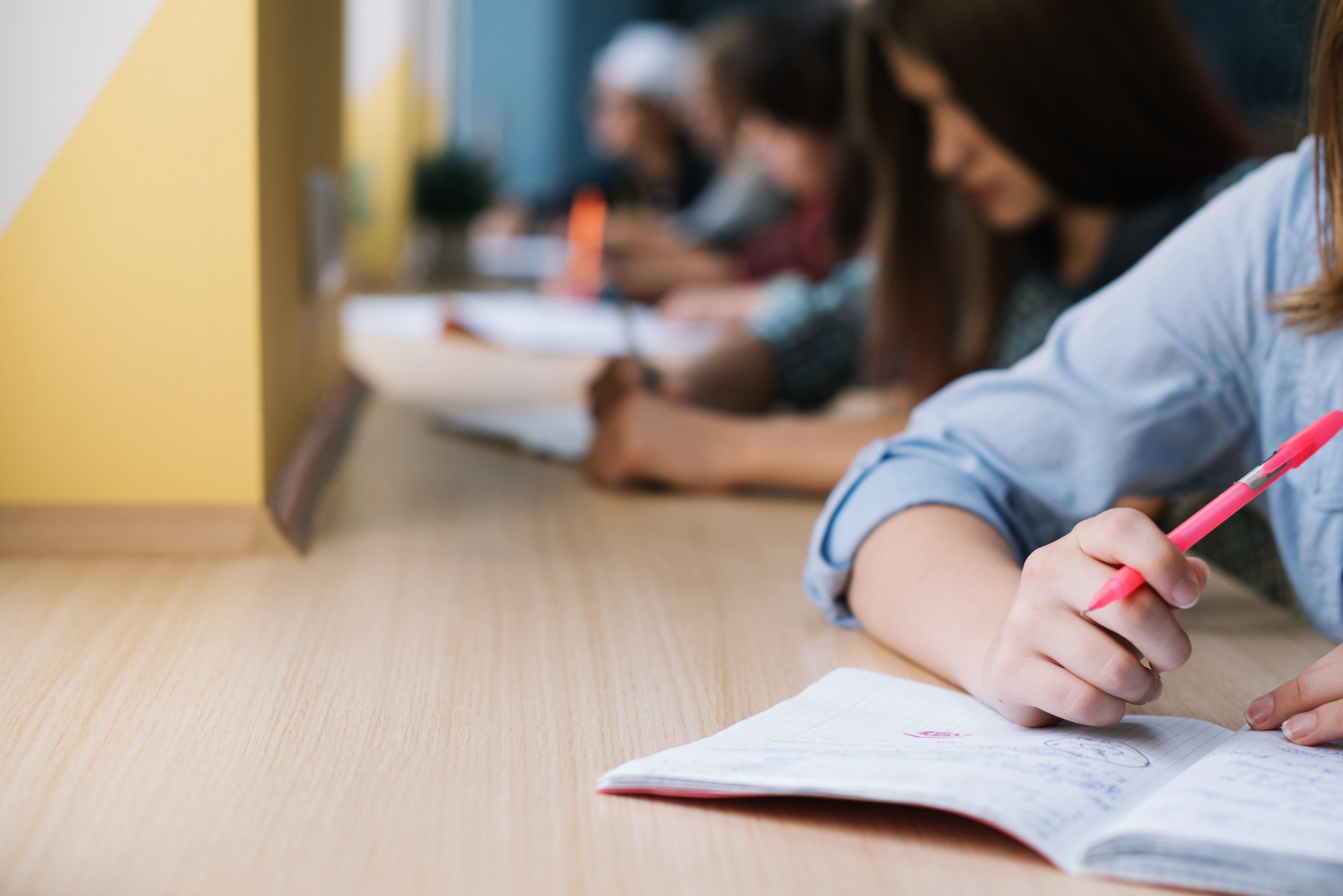 Obvestilo o popravnih, predmetnih in dopolnilnih izpitih v spomladanskem izpitnem roku